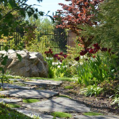 Krajina v krajině - tulipány na jaře